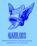 T-shirt Gaulois (heren)_